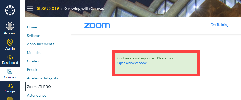 """Open in a new window"" prompt when trying to use Zoom in Canvas"